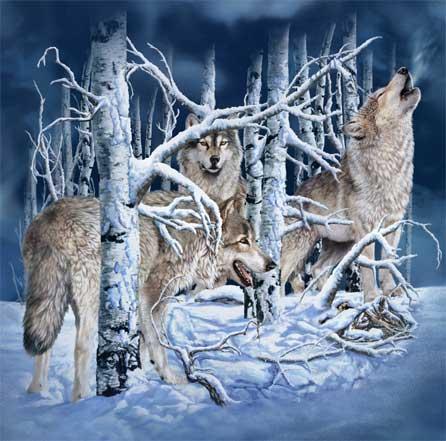 10 волков