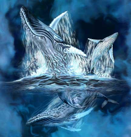 11 китов