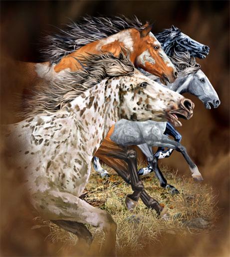 13 лошадок