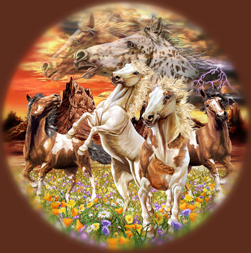 14 лошадей