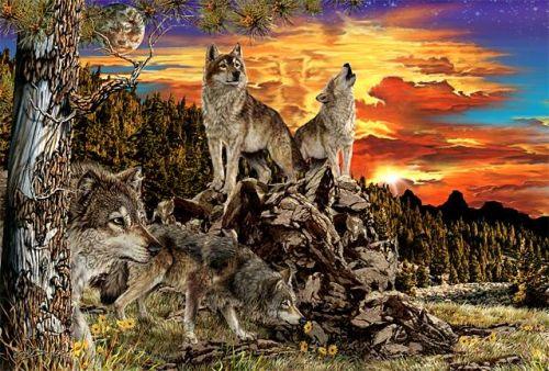17 волков