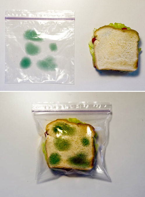 Иллюзорный бутерброд