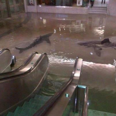 Нью-Йорк. Наводнение. Метро.