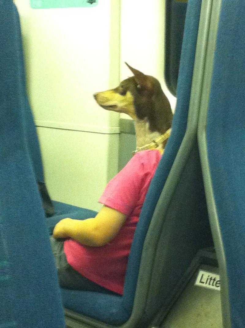 Странный пассажир