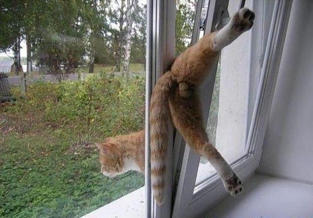 Все таки раньше окна были намного удобнее!