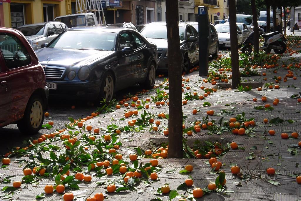 Апельсиновый дождь в испании