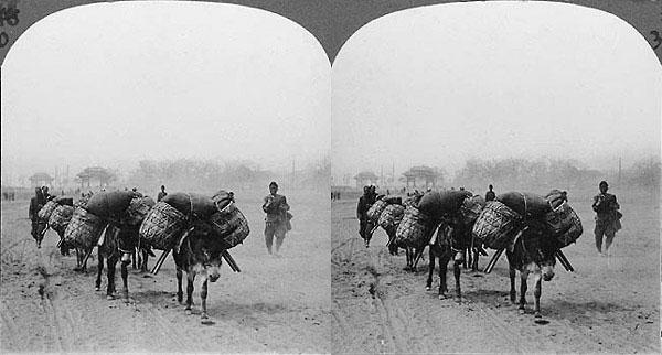 Burro packtrain, Manchuria