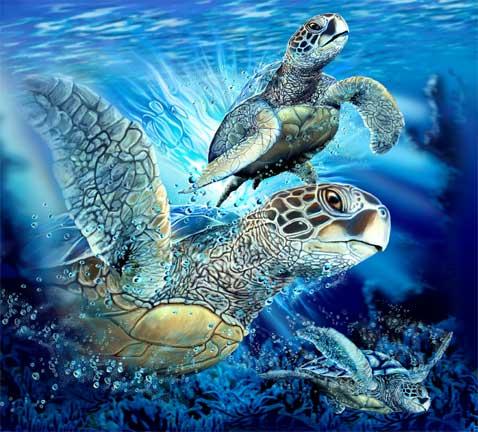 9 черепах