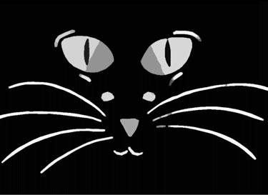 Мышка или кот?