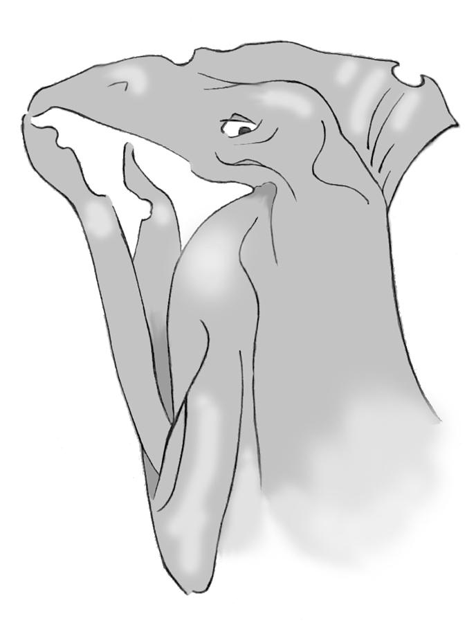Застенчевый клювонос. (с тонированными зонами внимания)