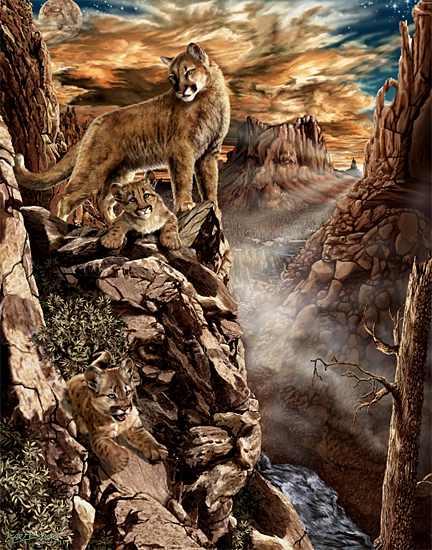cougars hidden