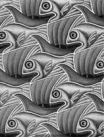 Парусник или рыба?
