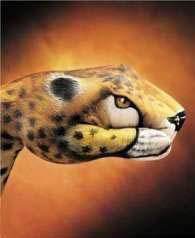 Тигр на кулаке