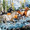 21 лошадка