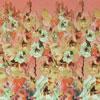 Заключительная стереограмма #14 из 3D книги  Ангелов