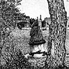 Лицо человека
