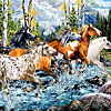 21 horses