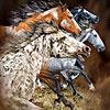 13 horses