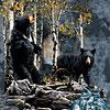 9 black bears