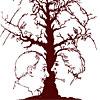 Многоликое дерево