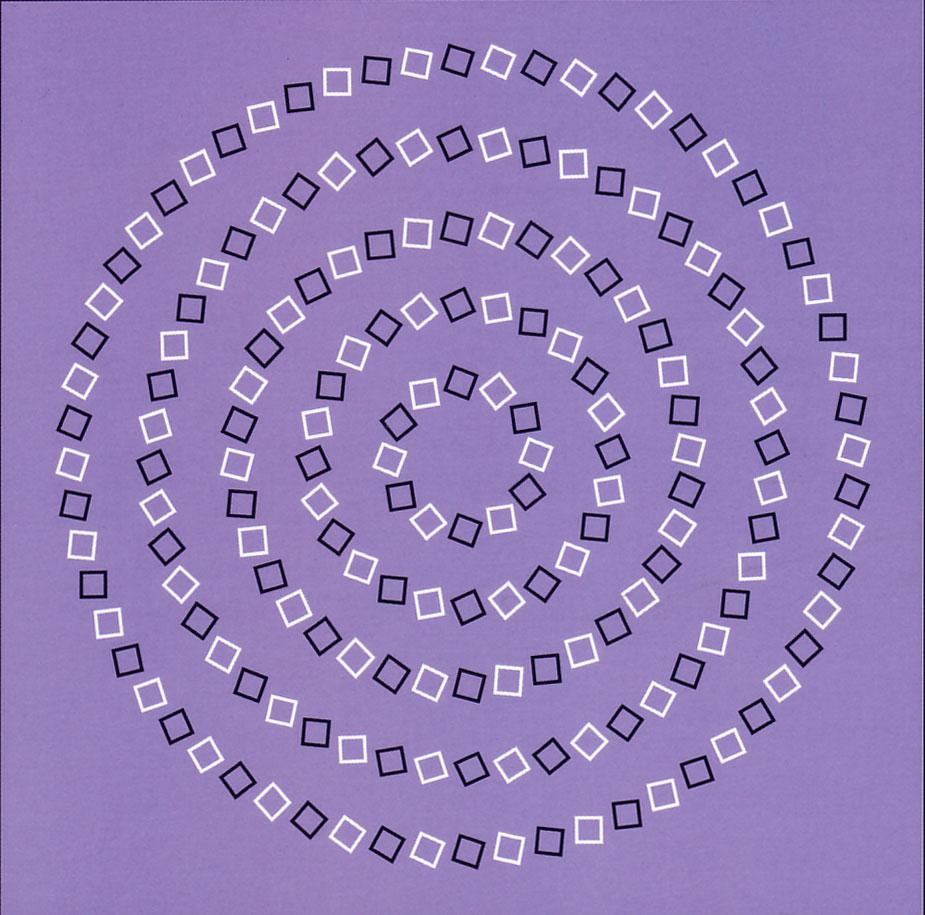 Концентрические окружности