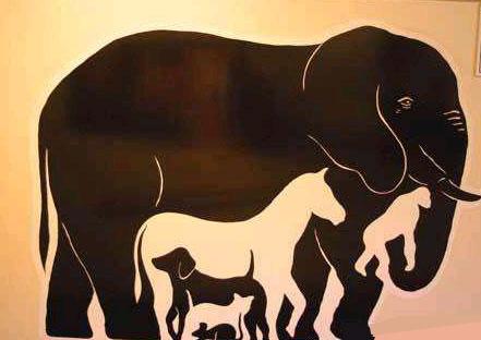 Все в одном слоне