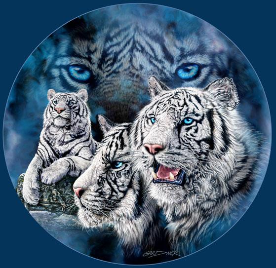 11 white tigers