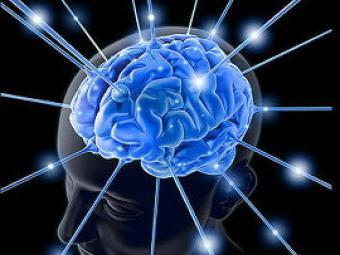 Японские ученые нашли способ «прочитывать» мысли человека