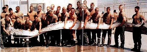 9(в). Oarfish. Весло. Большая рыба, 11 метров.