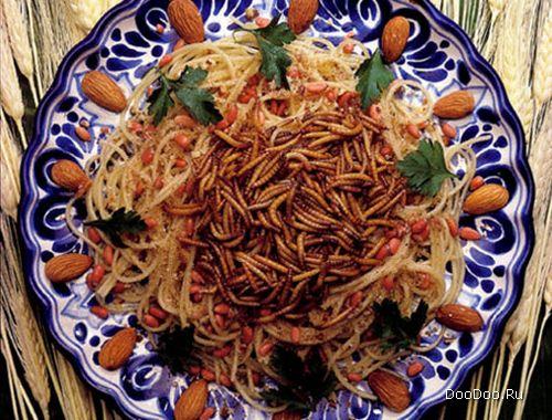 Мучные черви с рисом и овощами