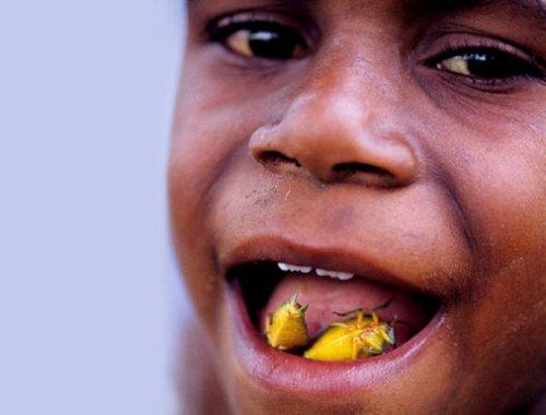 Мадагаскарские тараканы - настоящий деликатес!