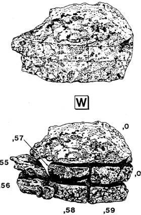 №70035 вес камня 5765 грамм, 23х15х10. За несколько лет нахождения в «хранилище глубокого вакуума» форма камня и его состояние необратимо изменились.