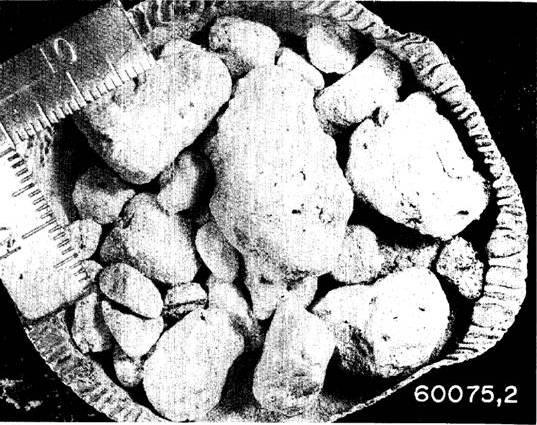 PETROLOG Описание внешнего вида и процесса разложения одной из «брекчий». Рыхлая брекчия имеет мелкозернистую оболочку и внутреннее заполнение 13 камешками. Ее механическое разложение на составляющие произошло в транспортировочной сумке.