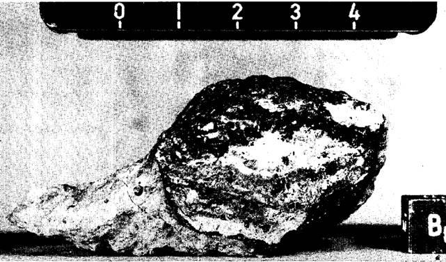 №72235 вес 62 грамм, неоднородная брекчия.