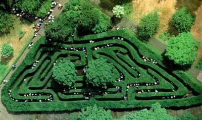 Hampton Court Maze (Англия)