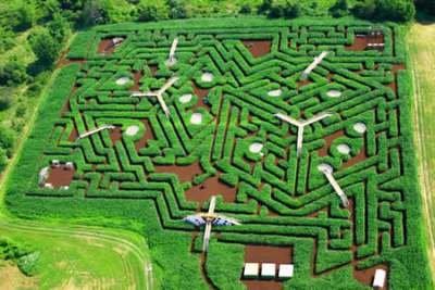 Davis' Mega Maze (США)