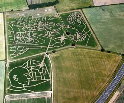 York Maze (Англия)