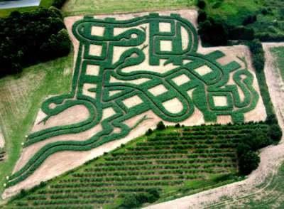 Snake Maze (Англия)