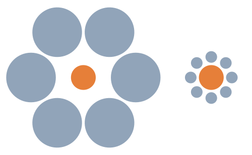 В своей работе учёные использовали иллюзии Эббингхауса
