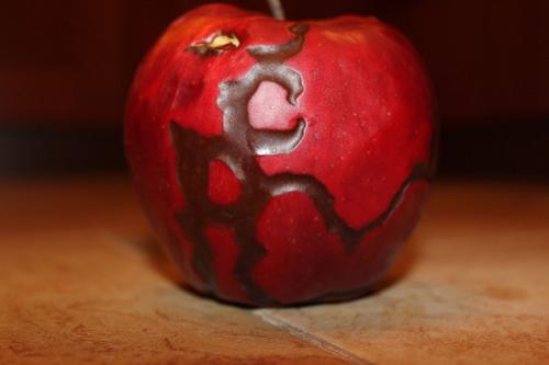 Яблоко с потусторонними следами. Кто такое видел и что это?