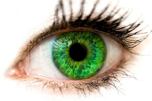 рис.1. Цвет глаз расскажет о характере человека