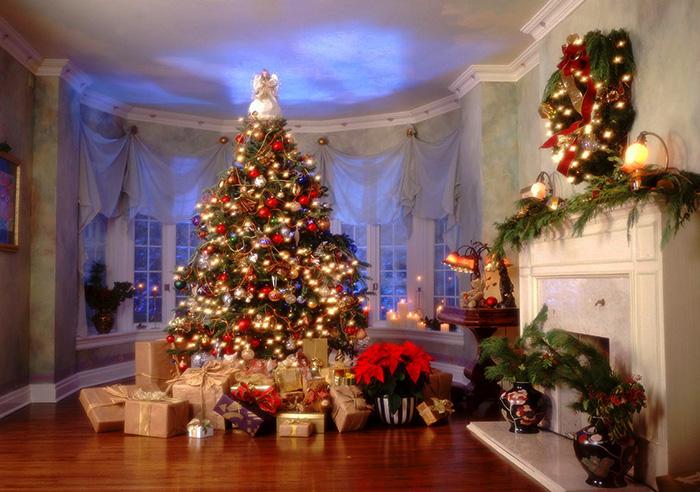 рис.11. Чем отличается Дед Мороз от Санта-Клауса?