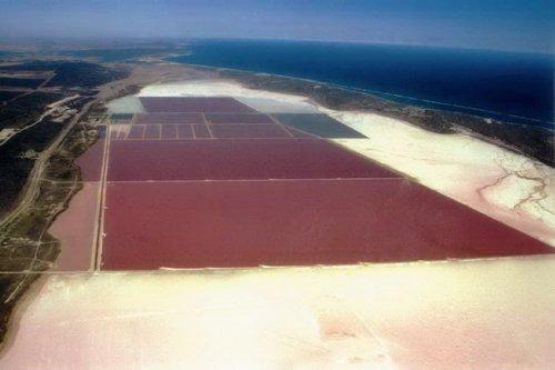 Лагуна Хатт (Hutt Lagoon), Австралия
