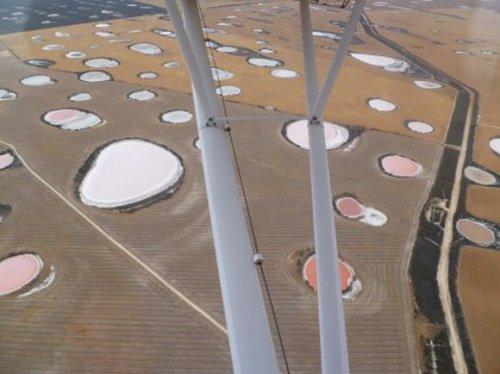 Поле Розовых Озёр, Австралия