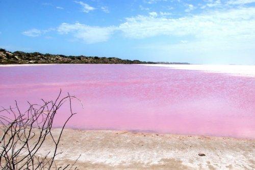 Розовое озеро, Австралия