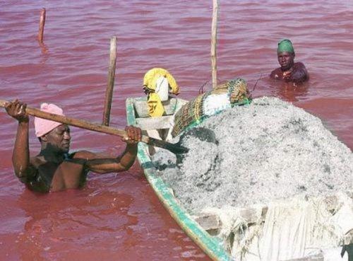 Озеро Ретба (Retba), Сенегал
