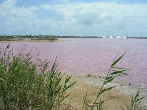 Соляное озеро Торревьеха (Torrevieja), Испания