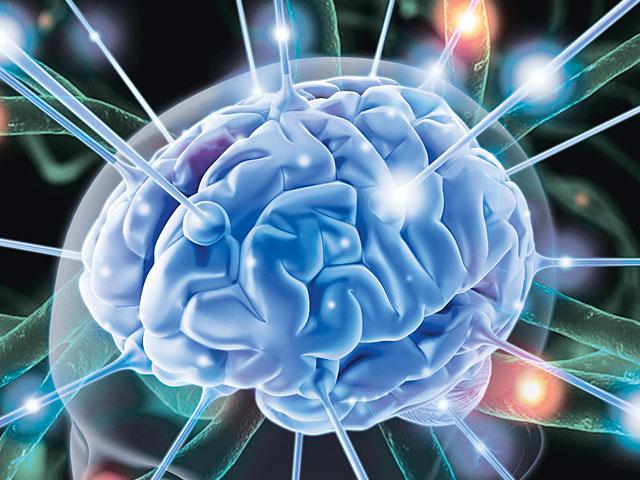 рис.1. Интересные факты о работе памяти и мозга