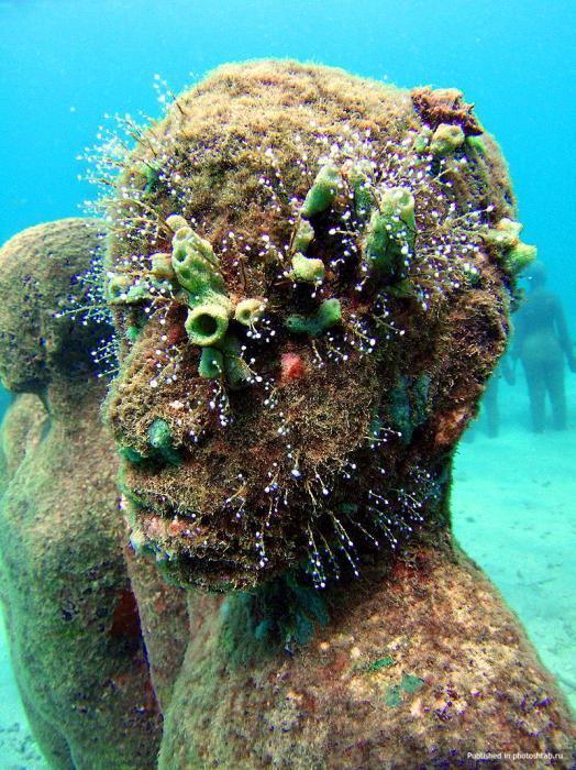 рис.15. Подводный музей в Мексике