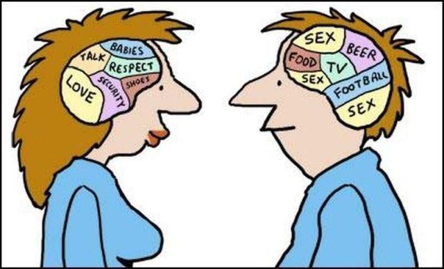 рис.1. Ученые объяснили мужской ум и женскую интуицию